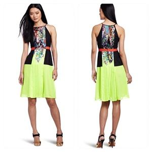BCBGMAXAZRIA Sahara Print Pleat Color-Block Dress
